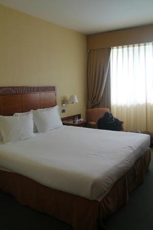 Leonardo da Vinci Rome Airport Hotel: Chambre