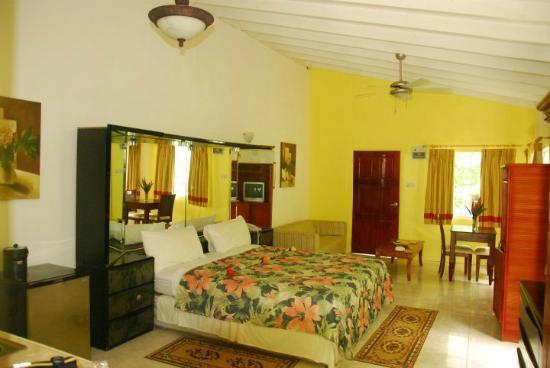 JJ's Paradise Hotel: Room