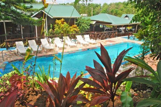JJ's Paradise Hotel: Pool