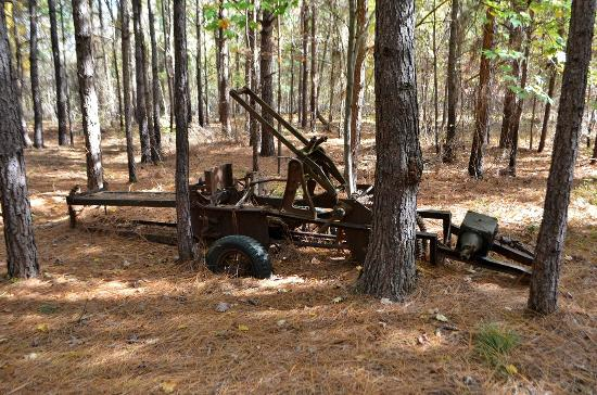 Clemmons Educational State Forest: Pine Straw Baler