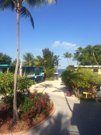 La Jolla Resort: View from room S