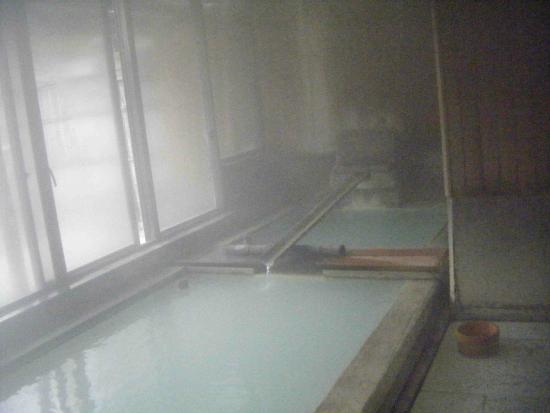 Nasuyumoto onsen ryokan shimizuya: 浴槽は乳白色でpH2.3くらいのの湯に満たされています