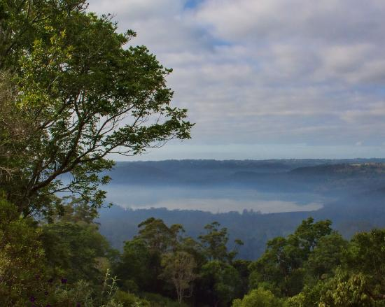 Montville Misty View Cottages: mist in the morning
