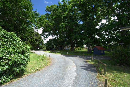 Te Aroha Holiday Park and Backpackers: drive through camp