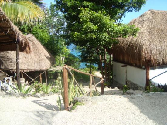 Tribu Camping: camino al hostal