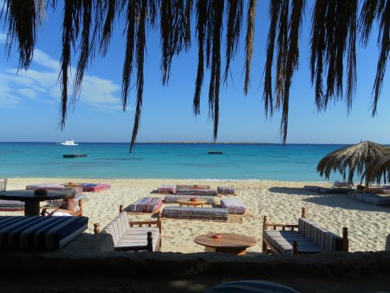 Mahmya Island: Vue de l'ile