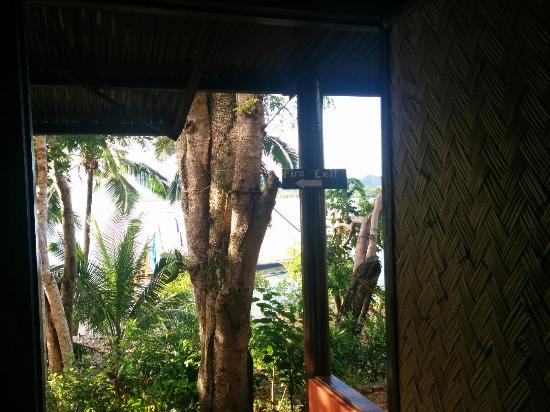 Discovery Island Resort and Dive Center : What I see when I open the door of the room in the morning, love it!