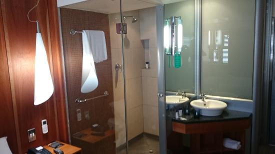 Protea Hotel by Marriott Cape Town Sea Point: A shot of the shower, wash area and separate loo behind
