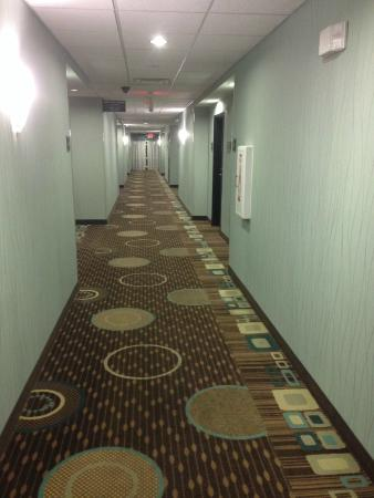 Comfort Inn & Suites Oklahoma City West - I-40: Hallway