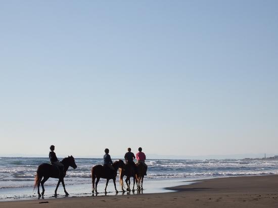 Horse Trekking Park Tateyama