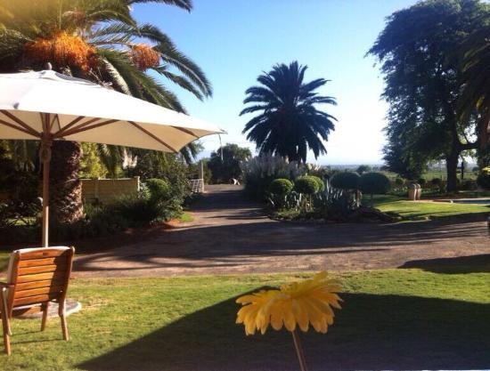 Thylitshia Villa Country Guesthouse: Garden