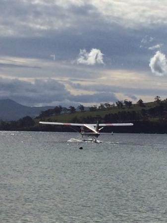 Bruny Beachside Accommodation: we walked to the beach to see this small plane landand take off....fun