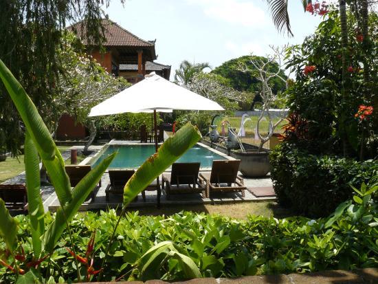 Mandala Desa: het zwembad vanaf villa nr.1