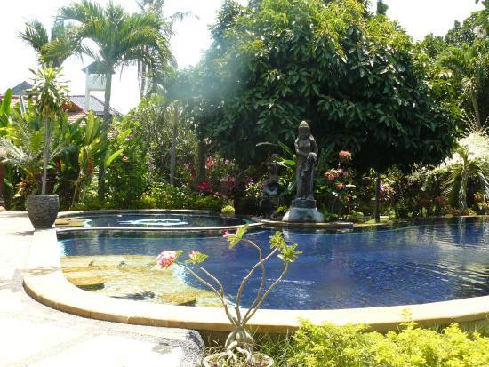 Sawah Lovina Bungalows: heerlijk zwembad