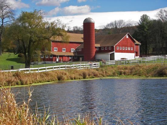 Montague, Nueva Jersey: Tasting Room