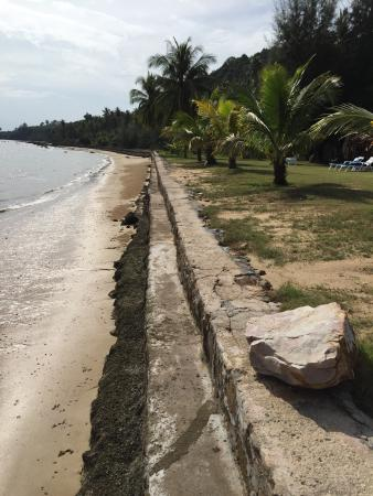 """Betterview Bed Breakfast & Bungalow: """"Beach"""" in the morning"""
