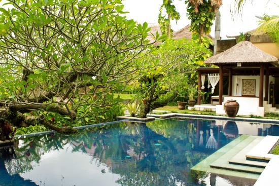 Anhera Suite: The main pool
