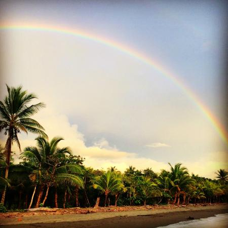 Kalon Surf - Surf Coaching Resort: A Costa Rican rainbow that won't soon be forgotten
