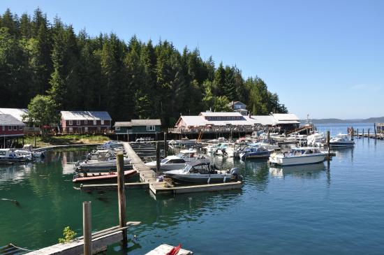 Telegraph Cove Marina & RV Park: Telegraph Cove