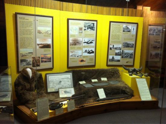 National Buffalo Museum : Buffalo Exploitation exhibit