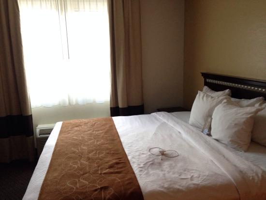 Comfort Suites- Norwich: Comfy bed