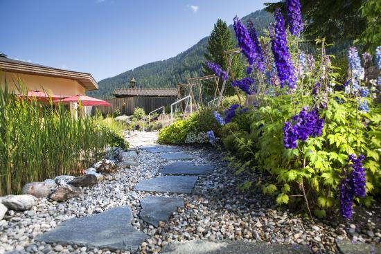 Hotel Eden: Garten beim Eden Naturschwimmteich