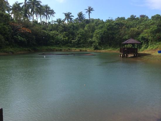 Caliraya Springs: Dory Fishing Village