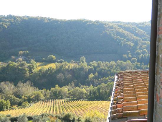 Villa il Castellaccio: View