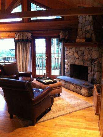 Rowena's Inn on the River: Fireplace