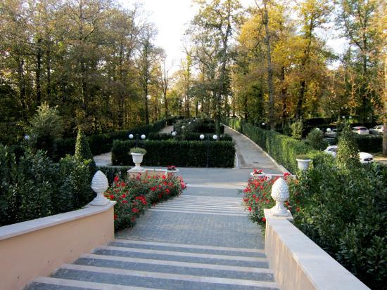 Ristorante La Foresta: scalinata