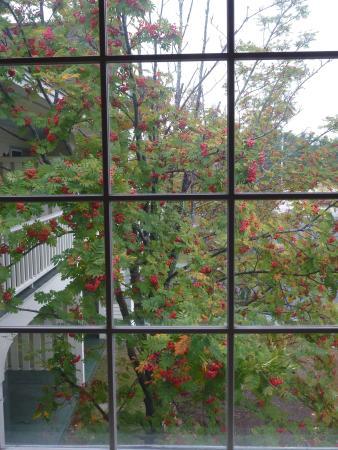 Green Granite Inn & Conference Center: Particolare, vista da una finestra.