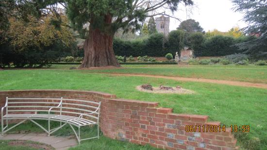 Caversham United Kingdom  City pictures : Caversham Court Gardens Picture of Caversham Court Gardens, Reading ...