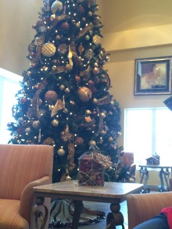 Resort at Governor's Crossing : Festive for the holidays, so cute.