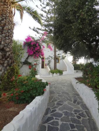 Hersonissos Village Hotel : Приятная территория отеля