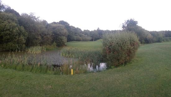 Woodbury Park Hotel & Golf Club: Golf course