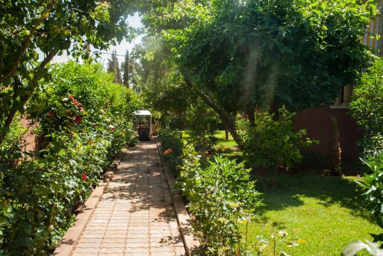 super jardin - picture of les belles terrasses, beni mellal