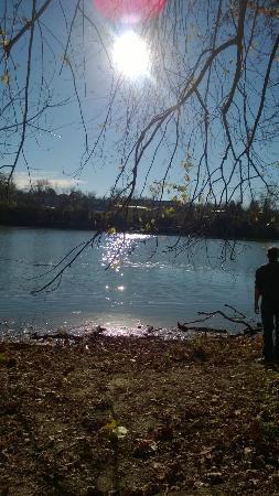 WVU Core Arboretum: Monongahela River from the Core Arboretum