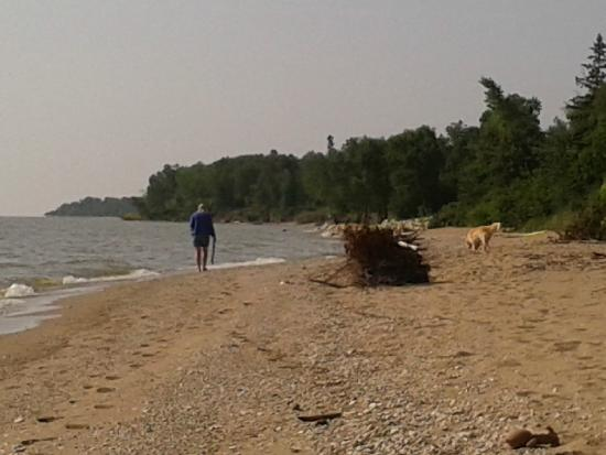 Post & Pelican B&B: Looking south along east facing beach