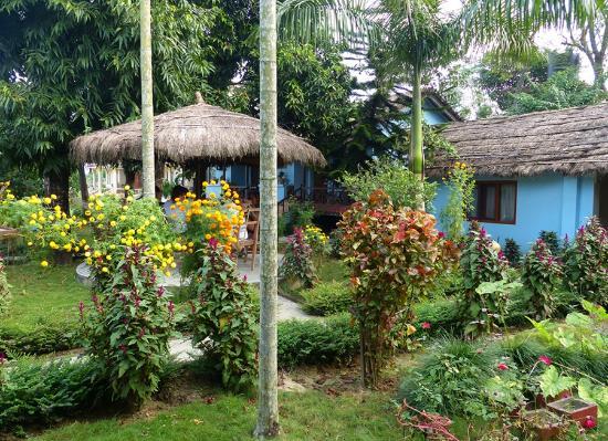 Chitwan Forest Resort: Jardins com zonas de convívio e apartamentos