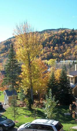 Les Chalets Alpins : Vue d'automne de notre chambre au 2e étage