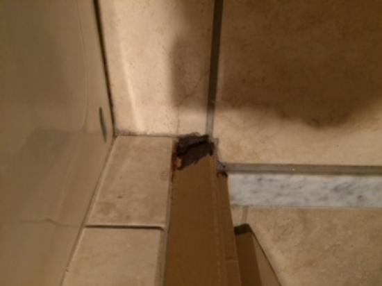 Clarion Hotel National City San Diego South : Bathroom had rust spot on doorjam