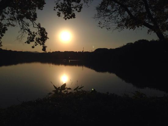Yamadaike Park: 朝日の映る山田池