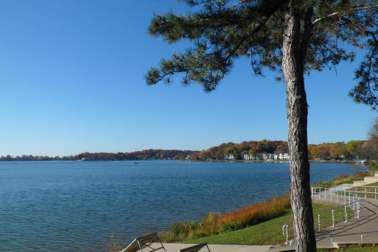 Twin Lakes, WI: Looking south from concrete patio.