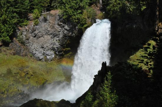 McKenzie Pass-Santiam Pass loop: Koosah Falls