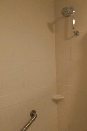 Best Western Plus Humboldt Bay Inn: Clean shower, which is a must have in my book :)