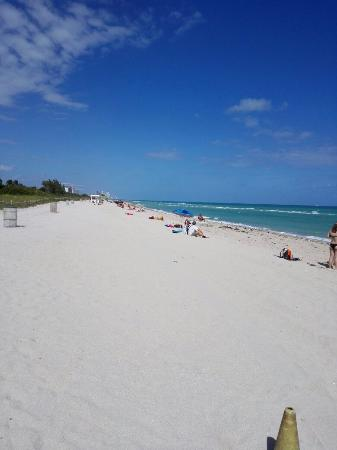 Ocean Surf Blue: Frente del hotel a 1 minuto descalzo jajaaja