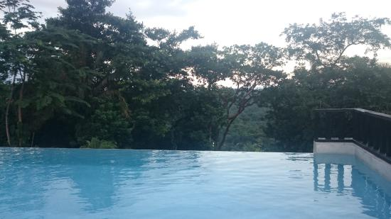Belcampo Lodge : Pool with amazing view