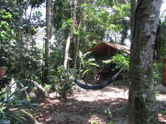 Pousada Ouro Verde: Jardins da pousada