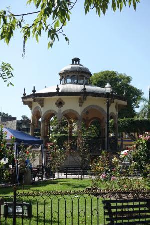 Jardin Hidalgo 2