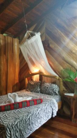 Hotel La Costa de Papito: Room